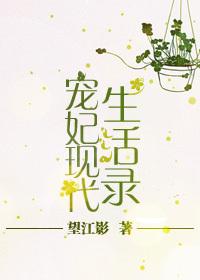 宠妃现代生活录封面